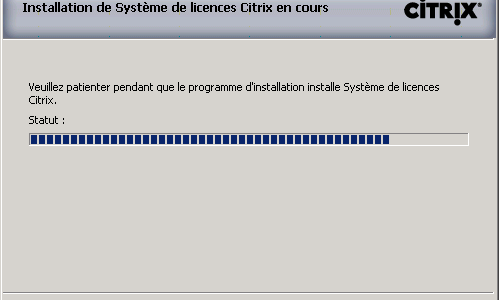 Citrix License Server 11.10 installation hang